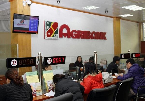 Thủ tục, hồ sơ vay vốn chăn nuôi ngân hàng AgriBank
