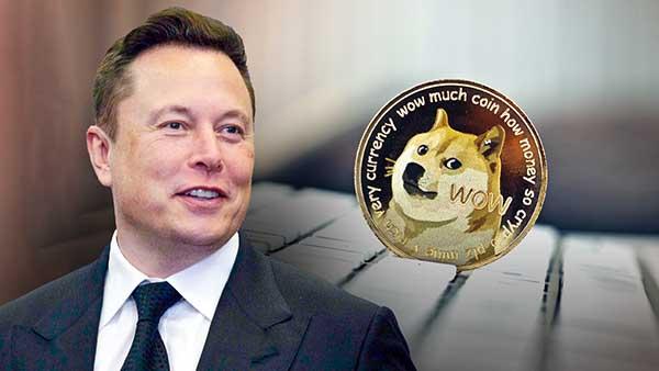 Mua bán Dogecoin ở đâu an toàn